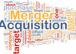 mergers &A by capital tree