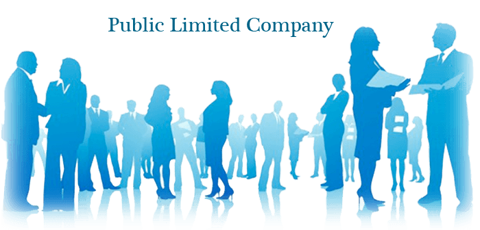 public limited company by capital tree